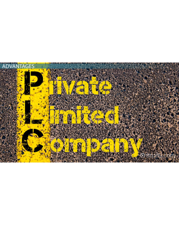 Limited And Private Limited